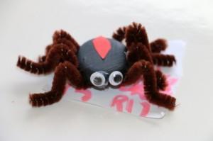Haylee's Spider.